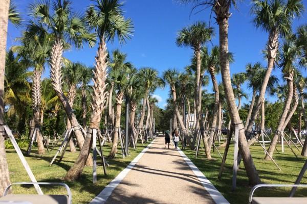 Regatta Park pathway