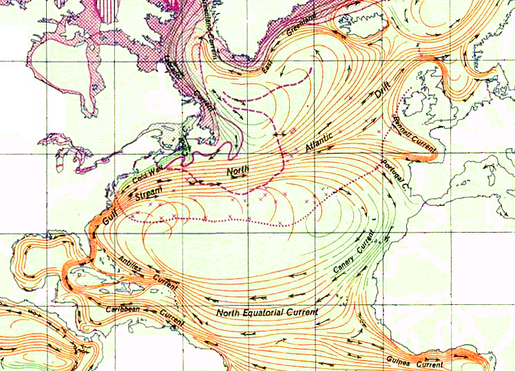 north atlantic gyre