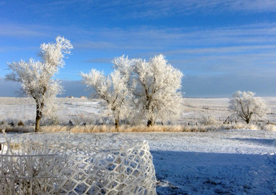 winter view at Fort Getty Jamestown RI