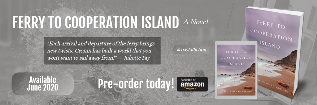 Ferry to Cooperation Island pre-order