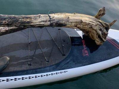 driftwood carried by SUP